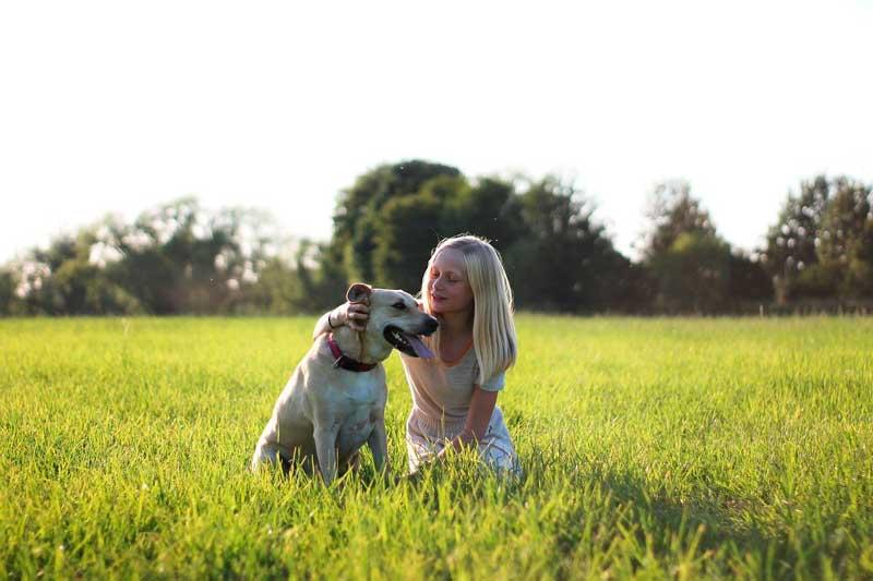 buena relacion con tu perro
